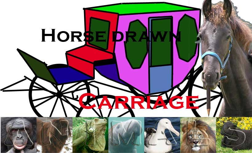 HorseDrawnCarriage.jpg?psid=1